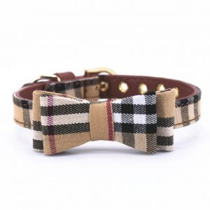 BB Bow Tie Collar